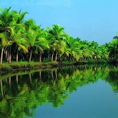 оздоровчий туризм в Індії, тури в індію, тур в індію, аюрведа, керала