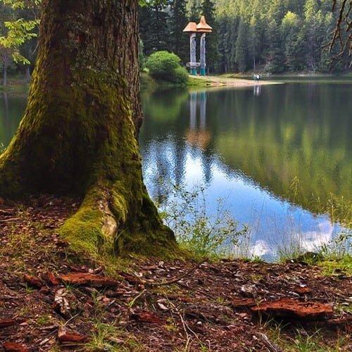 Екскурсії Україною Сиро-Винний тур Закарпаттям, палац шенборнів, озеро синевир