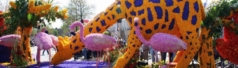 Парад квітів Bloemencorso