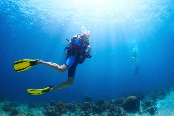 Дайв-клуб Paradise Diving, Мармарис