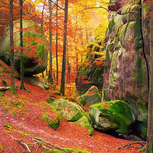 екскурсія в карпати, скелі довбуша